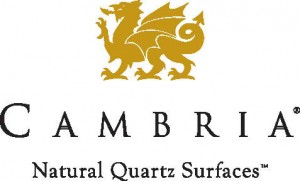 cambria_logo_color_on_white_tag