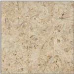 Belgian Truffles Granite Countertops Chattanooga