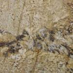Exotic Golden Granite Countertops Chattanooga