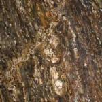 Golden Ray Granite Countertops Chattanooga