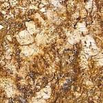Oxford Gold Granite Countertops Chattanooga