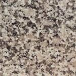 Gringo Perla Budduso Granite Countertops Chattanooga
