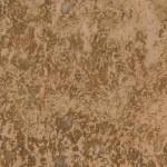 Napoleon Tigre Granite Countertops Chattanooga